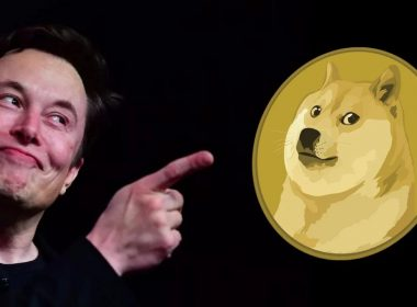 SpaceX Doge-1